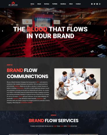 brandflow portfolio image